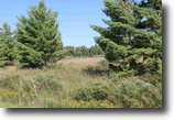 Michigan Farm Land 80 Acres TBD Gem Hill Road,  MLS# 1091486