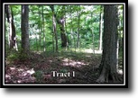 Ohio Hunting Land 5 Acres Lot 1,Moxley Road