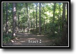 Ohio Hunting Land 5 Acres Lot 2, Moxley Road