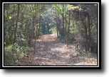 Ohio Hunting Land 15 Acres Paint Creek Woods