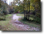 West Virginia Land 5 Acres 001 Lower Nicut Road  MLS 102683