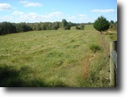 Beautiful Farmland, 113.14 Acres with Pond