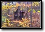 Ohio Hunting Land 14 Acres Starling Lane