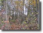 New York Hunting Land 6 Acres New York Building Lot Finger Lakes Region