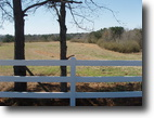 Land Beautiful Rolling 25 up to 77 Acres