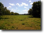 137 Acres in Oktibbeha County