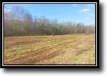 Ohio Hunting Land 13 Acres Black Run