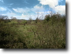 24 Acres ~ Bold Creek ~ Building Sites