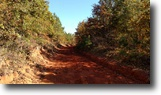 789 Acres Near Bay Springs Lake-Belmont,MS