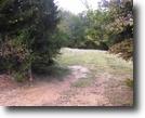 117 Acres of Farm Land in Oktibbeha County