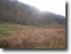 10.04 Acres on Shiloh Road
