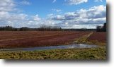 New York Farm Land 607 Acres Cranberry Farm Williamstown NY TURN KEY