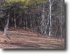 Virginia Land 3 Acres Two Wooded Lots ~ Priced to Sell