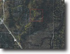 Ontario Land 41 Acres File 113- Good Private Hunting Land