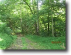 West Virginia Farm Land 131 Acres 0 Hamlin Road   MLS 102752