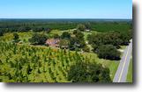 Florida Ranch Land 155 Acres Jemia Ranch