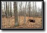 Ohio Land 26 Acres Delaware Woods