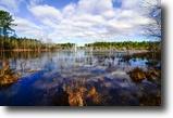 Georgia Hunting Land 135 Acres Slash Pine Pond
