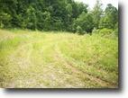 West Virginia Land 9 Acres 0 Cresent Drive  MLS 102770