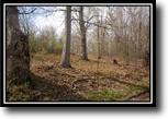 Ohio Hunting Land 9 Acres Gieke Ridge