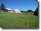 20 Acre homestead near Laytonville