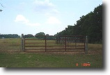 15 Acres of Open Land in Winston County