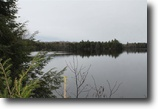 Michigan Waterfront 26 Acres Lot 9 Little Africa Lake Rd, Mls# 1086575