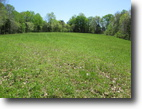 30.68 Acres In Metcalfe County