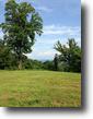 Virginia Farm Land 163 Acres 163 Ac Farm Along the Blue Ridge Parkway