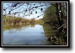 Ohio Hunting Land 155 Acres Rush Creek Retreat
