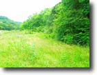 5 Acres On Holleman Bend Lane