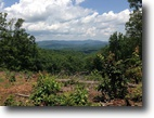 35 Acres and Stunning Mountain Views