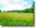 8.37 Acres On Reeder Town Road