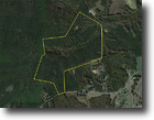 133 +/-  Acre Timberland Tract