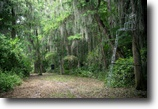 Florida Hunting Land 313 Acres Hunters Retreat on Lake Istokpoka