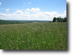 Farmland near Ithaca NY 209 Acres Fencing