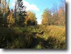 Michigan Hunting Land 10 Acres TBD Off Tuski Rd., Bergland, MLS# 1088652