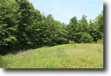 Michigan Land 20 Acres TBD Luoto Rd, Pelkie, MLS# 1088746