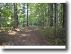Georgia Land 9 Acres 2 Large Lots with Beautiful Creek Frontage