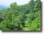 Tennessee Land 5 Acres 4.90 Ac. with Lake View on Dycus Landing L