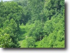 Tennessee Land 9 Acres 8.80 Ac with Lake View on Dycus Landing Ln
