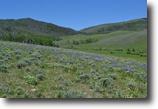Colorado Ranch Land 627 Acres Multi-Tract Auction