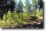 California Land 10 Acres Low Gap Get-Away