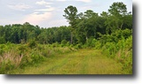 Florida Hunting Land 368 Acres Apalachee Recreational & Investment Tract