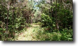 104 Acres of Recreational Land-OktibbehaCo