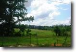 40 Acres in Winston County