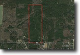 120 Acres for Sale in Webster County