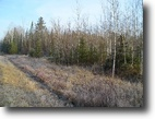 Wisconsin Hunting Land 76 Acres Town of Orienta