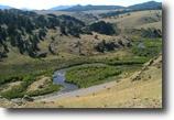 40 acre Colorado Gold Mining Claim