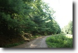 Virginia Hunting Land 5 Acres 5.307 Wooded Ac, Secluded, Owner Finance
